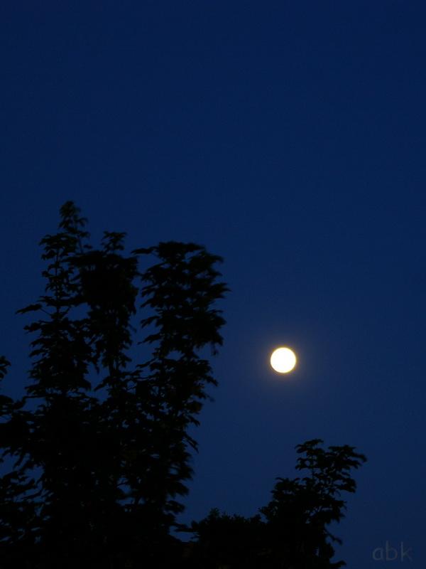 Lune Lune_f10