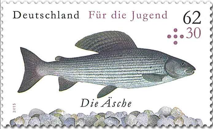 Ausgaben 2015 - Deutschland - Seite 2 Bild211