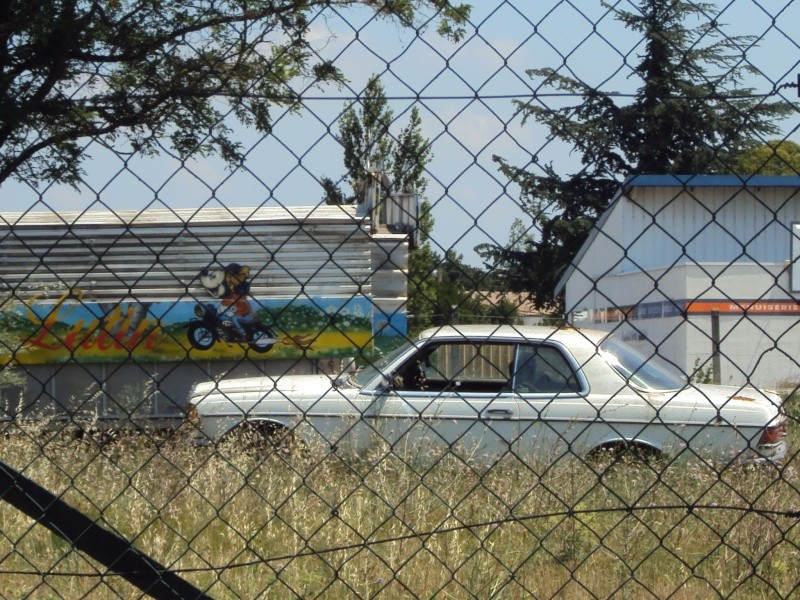 Les voitures abandonnées/oubliées (trouvailles personnelles) - Page 4 Dsc09328