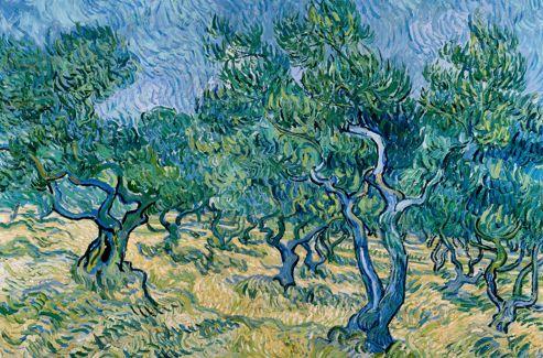 Vincent van Gogh [peintre] - Page 6 Olivie10