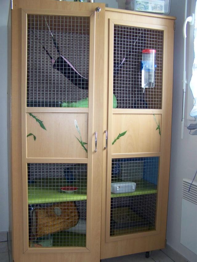 Grande cage NACS 100_2010