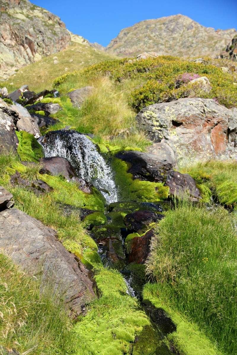 Histoires d'eau... Img_3710