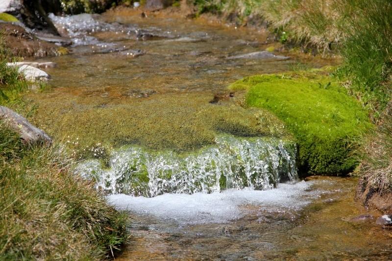 Histoires d'eau... Img_3712