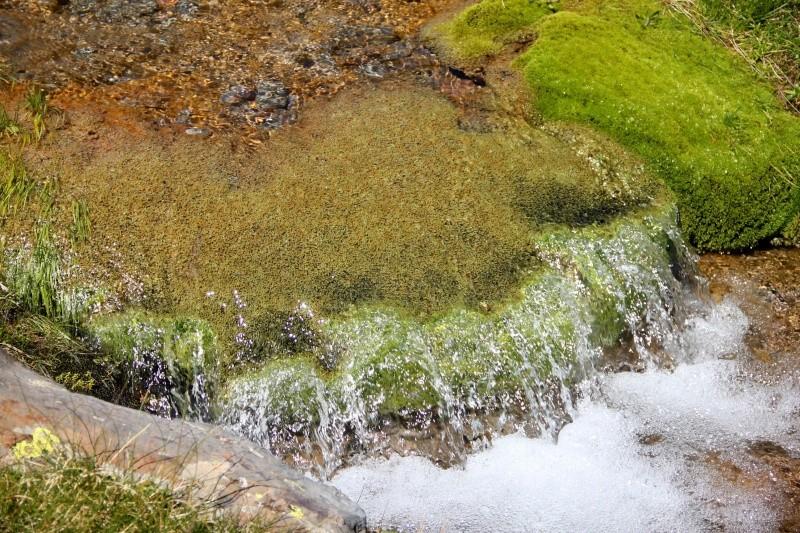 Histoires d'eau... Img_3713