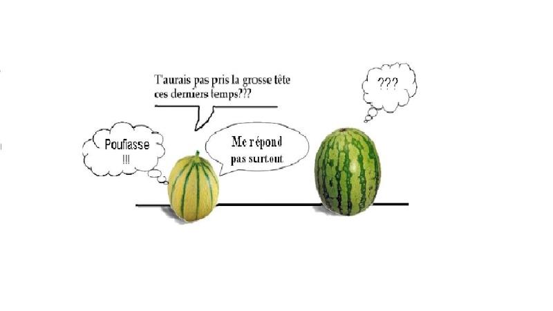 MASTERCHEF  2015  ...  SAISON  V  ...  SEMAINE  V  ... - Page 4 Melon-10