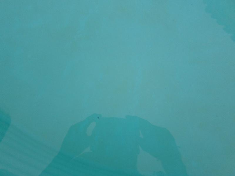 problème : fine peliculle verte au fond Sam_0410