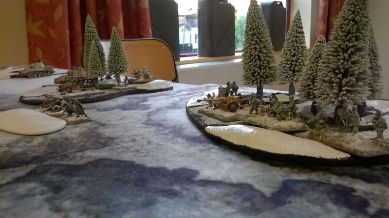70e anniversaire de la bataille de Grussenheim. Wp_20112