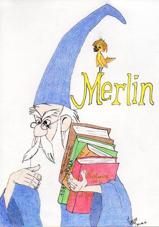 Concours de Production Artistique : Intersaison : thème libre. Merlin10