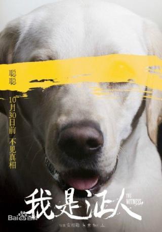 [ Projet C-Film ] The Witness Aa189710