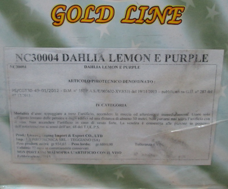 DAHLIA LEMON E PURPLE 01410