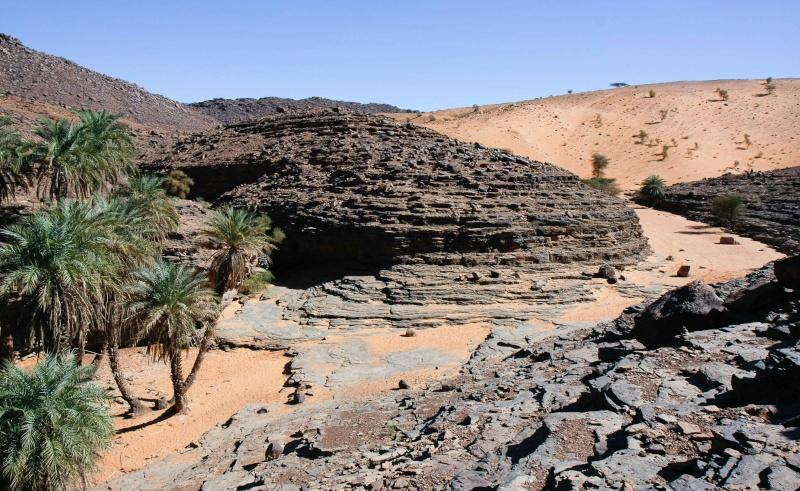 2006 Mauritanie en 4x4 bimoteur Maurit19
