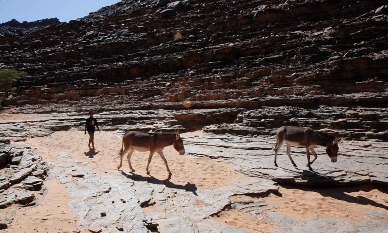 2006 Mauritanie en 4x4 bimoteur Maurit20