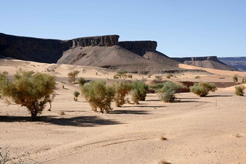2006 Mauritanie en 4x4 bimoteur Maurit30