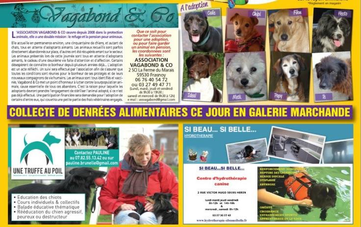 Journal de bord d'une éduc' en devenir - Page 12 Auchan10