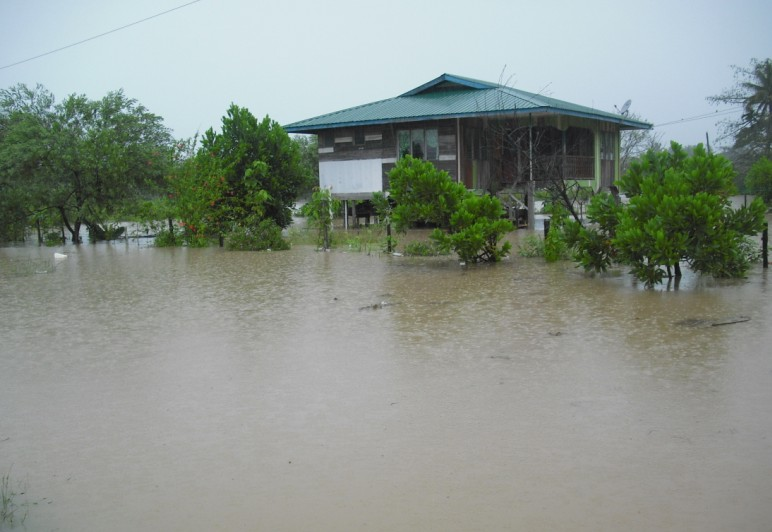 Kota Belud banjir lagi .... 16/1/2010 Banjir15