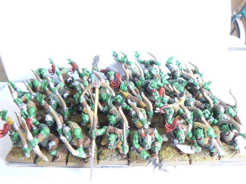Mon armée de peaux verte. P1130413