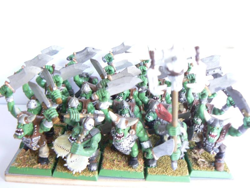 Mon armée de peaux verte. P1130414