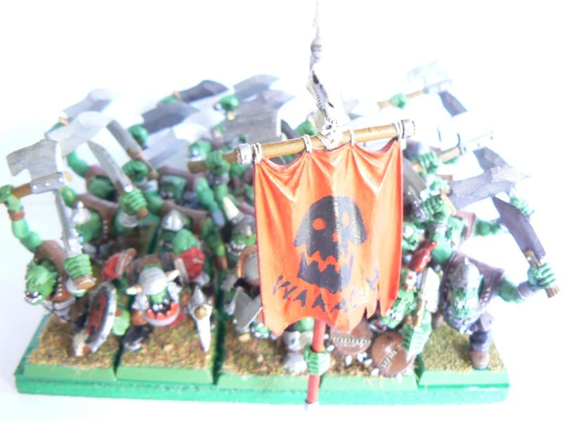 Mon armée de peaux verte. P1130415