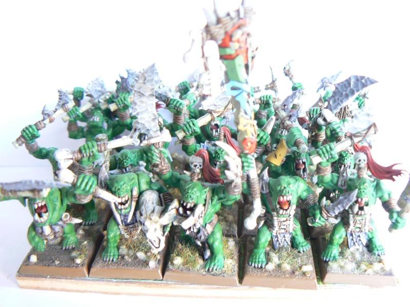 Mon armée de peaux verte. P1130417