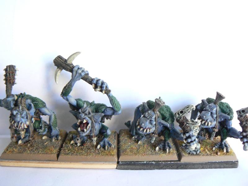 Mon armée de peaux verte. P1130426