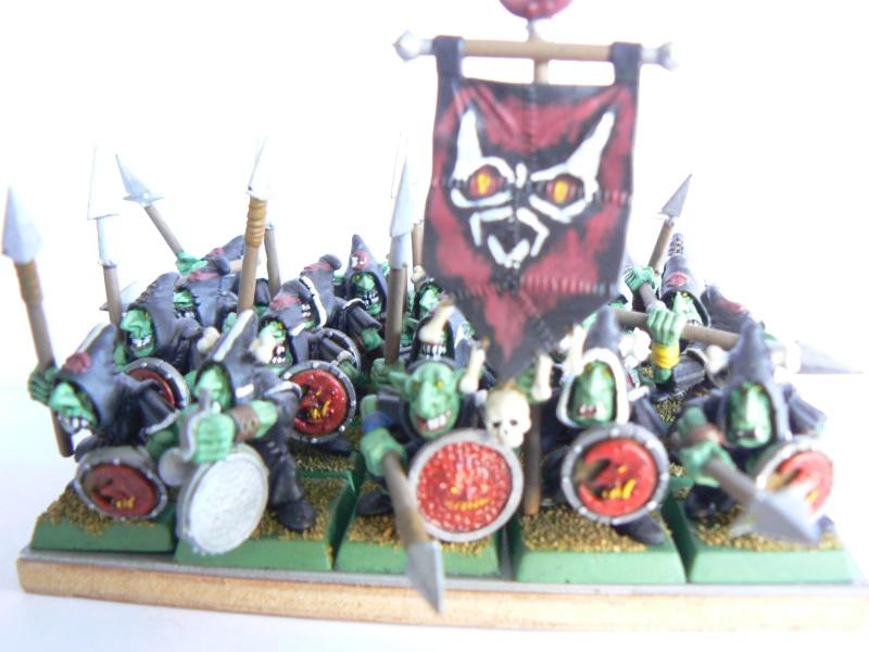 Mon armée de peaux verte. P1130515