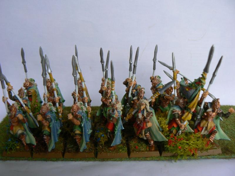 Mon Armée Elfes Sylvains P1130610
