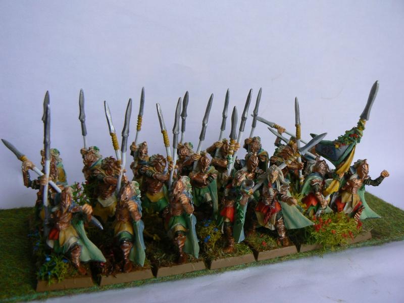 Mon Armée Elfes Sylvains P1130611