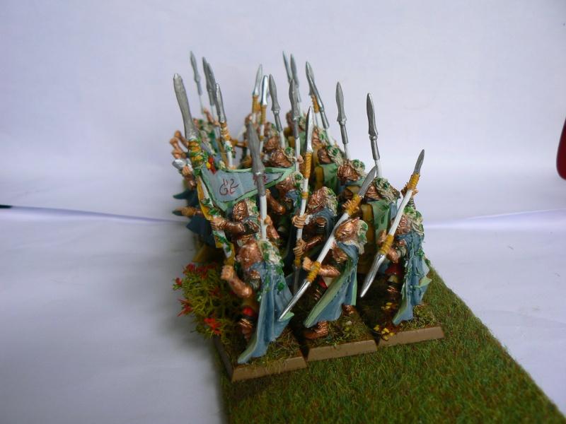 Mon Armée Elfes Sylvains P1130612