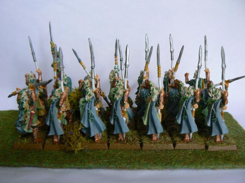 Mon Armée Elfes Sylvains P1130613