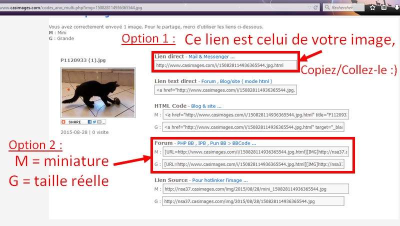 Comment mettre une photo sur le forum ? - Page 2 Photo_11