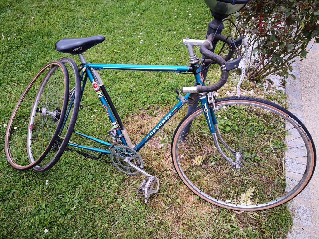 Mon Peugeot mais lequel...  Img_2010