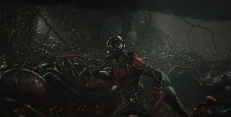 Ant-Man 14 juillet 2015 (Marvel) - Page 2 11753612