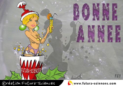 BONNE ANNEE 2010 Bonne-10