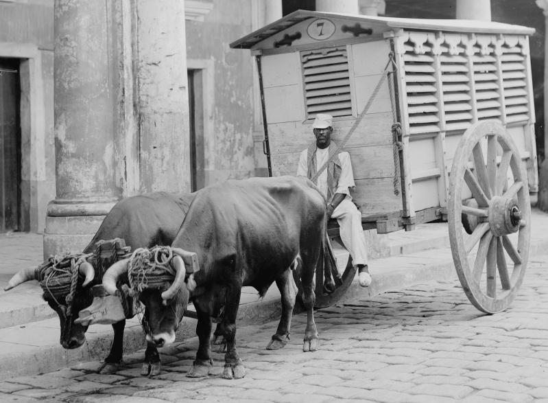 1958 - FOTOS DE CUBA ! SOLAMENTES DE ANTES DEL 1958 !!!! - Página 17 Camion10
