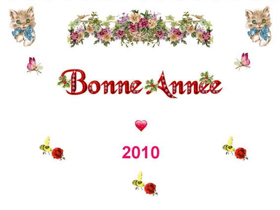 Bonne Année 2010 ...... Diapos11