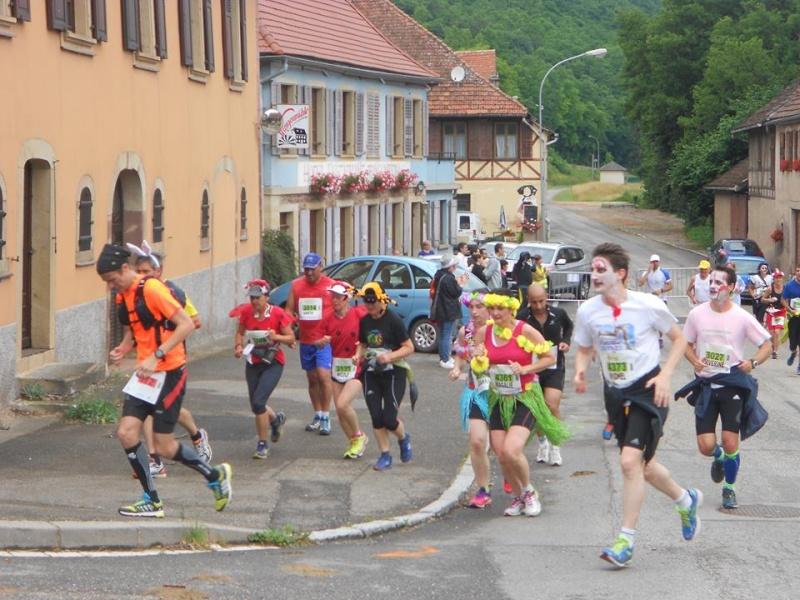 11 ème édition du Marathon du Vignoble d'Alsace et son passage à Wangen le 21 juin 2015 11168910