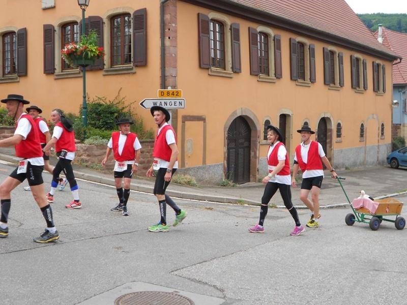 11 ème édition du Marathon du Vignoble d'Alsace et son passage à Wangen le 21 juin 2015 11221511