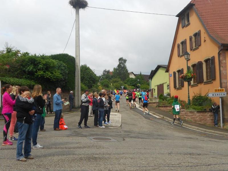 11 ème édition du Marathon du Vignoble d'Alsace et son passage à Wangen le 21 juin 2015 22807_12