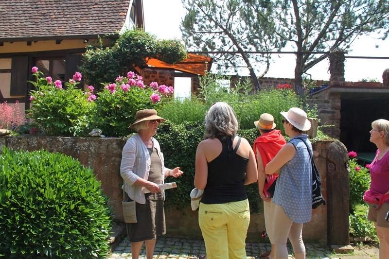 Rendez-vous aux jardins à Wangen les 6 et 7 juin 2015 avec l'association Découvrir. Img_6912