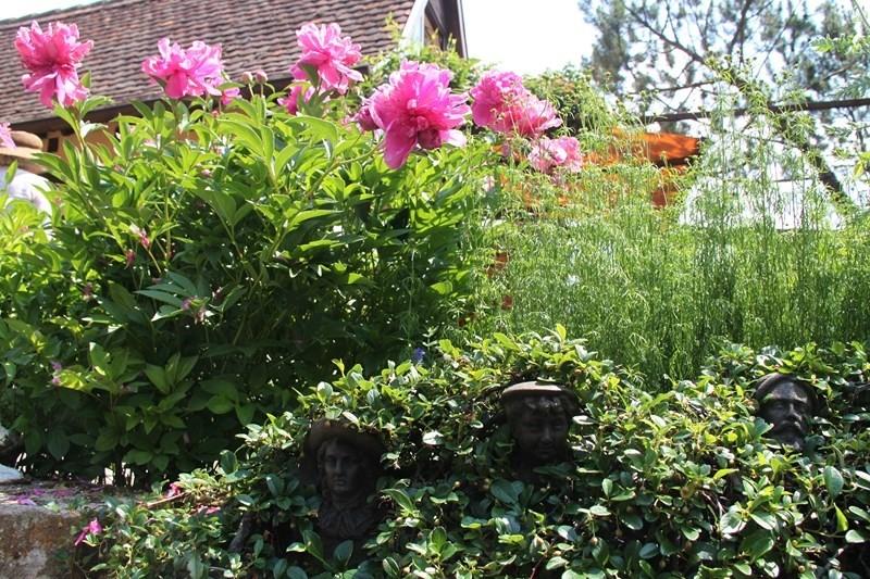 Rendez-vous aux jardins à Wangen les 6 et 7 juin 2015 avec l'association Découvrir. Img_6913