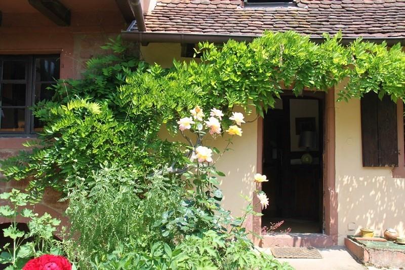 Rendez-vous aux jardins à Wangen les 6 et 7 juin 2015 avec l'association Découvrir. Img_6915