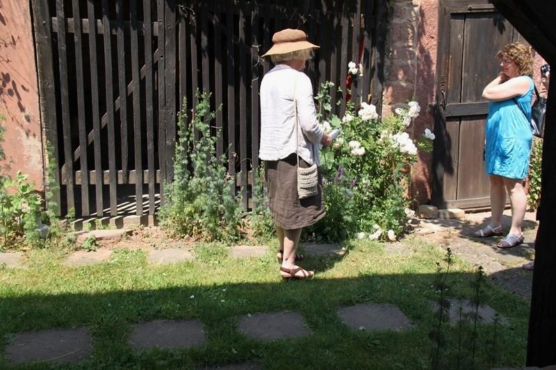 Rendez-vous aux jardins à Wangen les 6 et 7 juin 2015 avec l'association Découvrir. Img_6919
