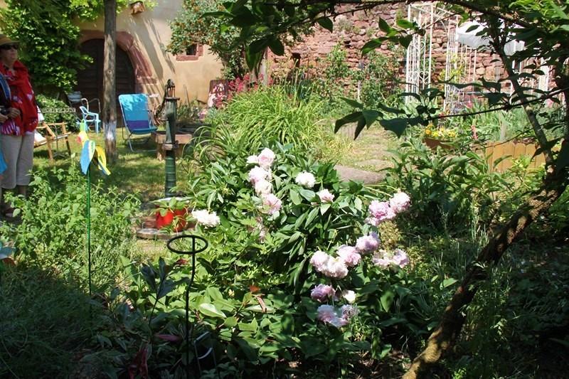 Rendez-vous aux jardins à Wangen les 6 et 7 juin 2015 avec l'association Découvrir. Img_6926