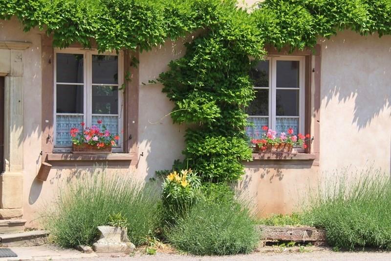 Rendez-vous aux jardins à Wangen les 6 et 7 juin 2015 avec l'association Découvrir. Img_6929