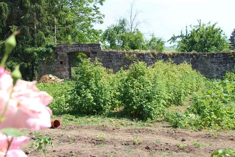 Rendez-vous aux jardins à Wangen les 6 et 7 juin 2015 avec l'association Découvrir. Img_6932