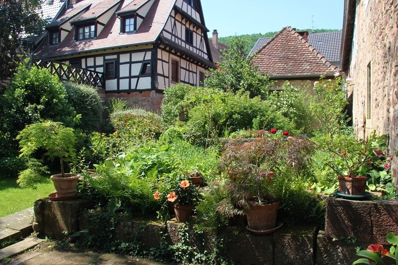 Rendez-vous aux jardins à Wangen les 6 et 7 juin 2015 avec l'association Découvrir. Img_6937