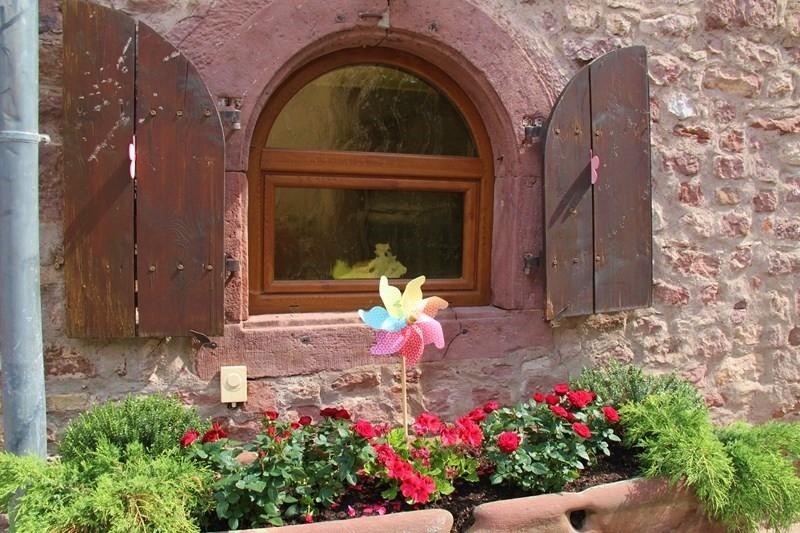 Rendez-vous aux jardins à Wangen les 6 et 7 juin 2015 avec l'association Découvrir. Img_7040