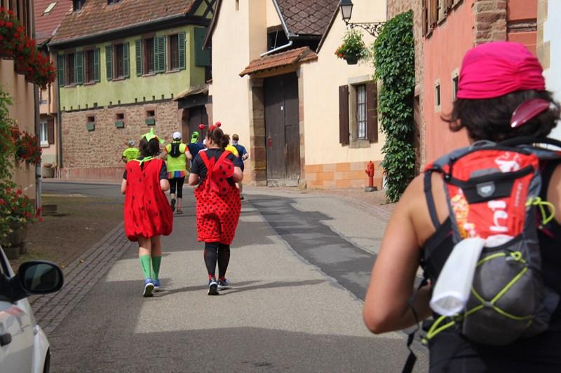 11 ème édition du Marathon du Vignoble d'Alsace et son passage à Wangen le 21 juin 2015 Img_8315