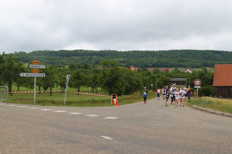 11 ème édition du Marathon du Vignoble d'Alsace et son passage à Wangen le 21 juin 2015 Img_8422