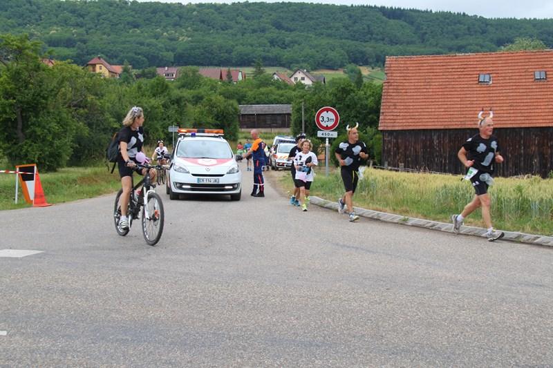 11 ème édition du Marathon du Vignoble d'Alsace et son passage à Wangen le 21 juin 2015 Img_8426